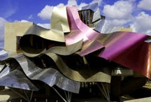 Architecture - Frank Gehry / by Anoush