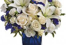 Central Florist Seasonal/Holiday Flowers