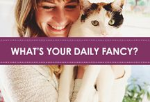 What's Your Daily Fancy? / We know that Fancy Feast is a daily dose of joy for our cats, but what about the owners? To find out, we reached out to our fellow bloggers for an ongoing series in which some of our favorite cat owners dish about their feline-inspired lifestyle and their favorite cat moments.
