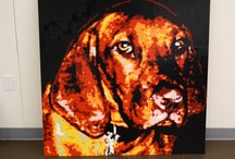 LEGO Animal portraits / From our favorite furry friends to proud school mascots, these animals have been memorialized in Lego mosaic portraits.