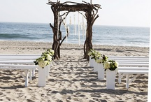 Weddings / by Devon Cribbin