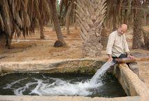 Rachid KoraPïchi, l'art du développement durable/ Institut des Cultures d'islam