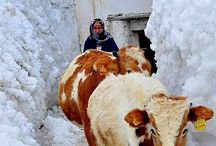 Türkiye foto