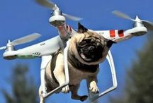 Drone 드론 짱 / 무인 비행장치