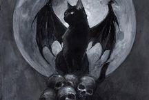 Skulls ´n cats