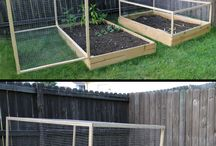 Raised beds - vegetables