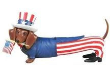 Hot Diggity Dog Westland