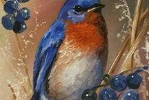 quadros de pássaros