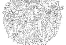 COLORING BOOK BY JOHANNA BASFORD