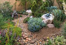 Home | Water Wise Gardens