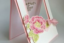 Stampin Up Birthday Blooms
