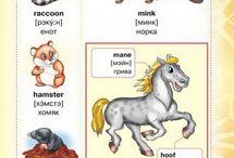 Angličtina pro děti ;)