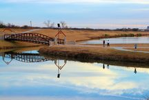 Creek View / Nature lovers... enjoy our beautiful grounds, landscape, creek view/bicycle trail!