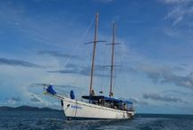Seaspray Day Sailing Adventure Fiji / Seaspray is the magnificant classic schooner of television fame. On Seaspray you can sail in comfort and explore the crystal clear waters, beautiful beaches and lagoons of the Mamanuca Islands in Fiji. Book your day cruise with South Sea Cruises or Awesome Adventures Fiji.