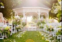 Wedding / by Meagan John