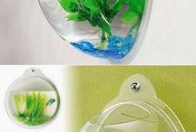 aquarium imut