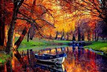 Autumn / by Katrina Jones