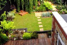 Backyard Planning / by Kate Rankin