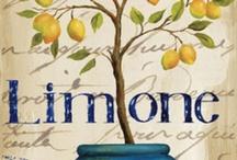 Citrus / All things lemon