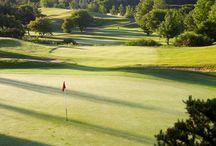 Golf Course / Cottingham Parks Golf Club