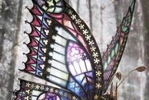 pillangok / A táblám  a pillangok színeíről szól.