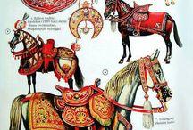 rząd XVII wiek