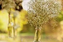 Wedding Props, Favors, Etc