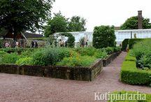 Sofiero / Sofieron linnanpuutarha Helsingborgissa, Ruotsissa on kuningas Kustaa Adolf kuudennen ja hänen vaimonsa Margaritan luomus. Puisto on kuuluisa mm. valtavista alppiruusuista ja atsaleoista, joita puistossa kasvaa yli 500 erilaista. Myös Sofieron keittiöpuutarha sekä ruusu- ja perennapenkit ovat näkemisen arvoisia. Kotipuutarhan lukijamatkalaiset vierailivat Sofierossa kesäkuussa 2016.
