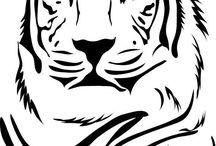 Zvířata - tygr