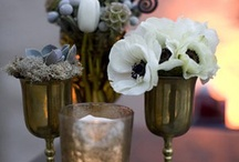 Lovely Home Decor / by A. Liz Adventures