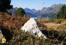 Hahnensee - Fuorcla Surlej / Die Wanderung ist für jedermann zu machen und dürfte zu den schönsten im Engadin gehören. Nach ca. 1h erreicht man den Hahnensee. Danach geht es weiter Richtung Fuorcla Surlej. Unterwegs hat man eine grandiose Aussicht über die Engadiner Seenplatte!