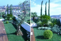 Green roofs and others