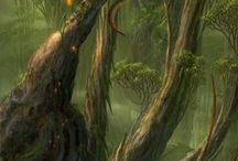 Forest Fragment / Forest beauty and fantasy