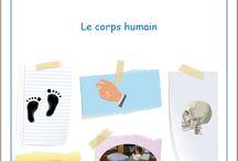 Le corps humain (JEC) / Jeu en chemise du corps humain, par l'Association Carpe Diem