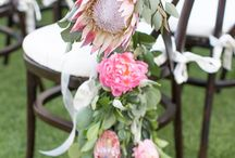 King Protea Weddings