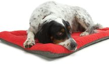 West Paw Design @ The Pet Kitchen / One of our favourite suppliers