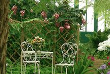 Gardens / Lovely flowers and gardens you should see