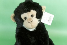 {Zoo Gifts} / Check out Sunset Zoo's Gift Shop for the perfect souvenir!