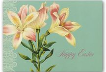 EASTER / Cards, Home Décor, Toys and more. / by Christianbook.com