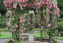 Garden:  Gazebo