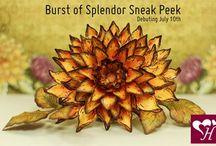 Burst of Splendor