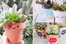 Plantas y animales <3
