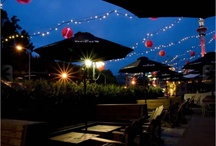Auckland's finest drinking establishments