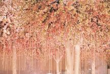 Wedding Decor and Ideas