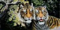 dva tygři