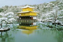 Japan / by Simona Balian Ramos