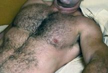 hairychested