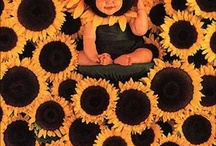 Anne Geddes & other baby photographers