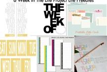 Project Life  / by Sarai Stine