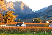 Day trip - Cape Town to Franschhoek / Nestled between towering mountains in the beautiful Cape winelands lies the magnificent Franschhoek Valley. This is the food and wine heartland of the country, where splendid wines are grown and our top chefs create international cuisine.